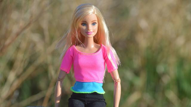 Barbie Blonde Toy Girl Doll Posing Female Model