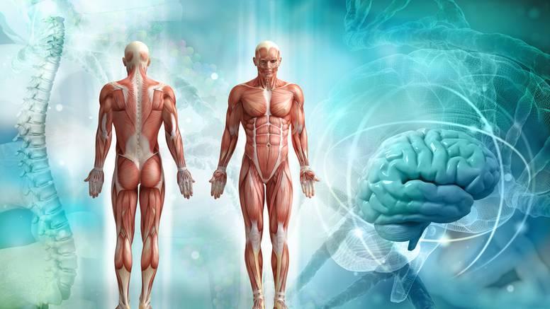Kineska medicina: Bol sjeda na pluća, strah uništava bubrege...
