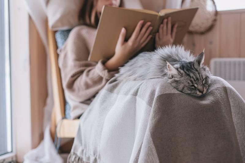 Nikad niste sigurni kako vam se mačka osjeća? Ovo su znakovi koji otkrivaju da je usrećujete