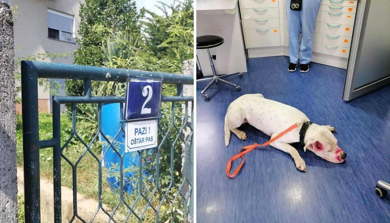 Tito ugrizao policajca, ovaj ga je pretukao: 'Zašto je ulazio uopće u dvorište? Moj pas je jako loše'