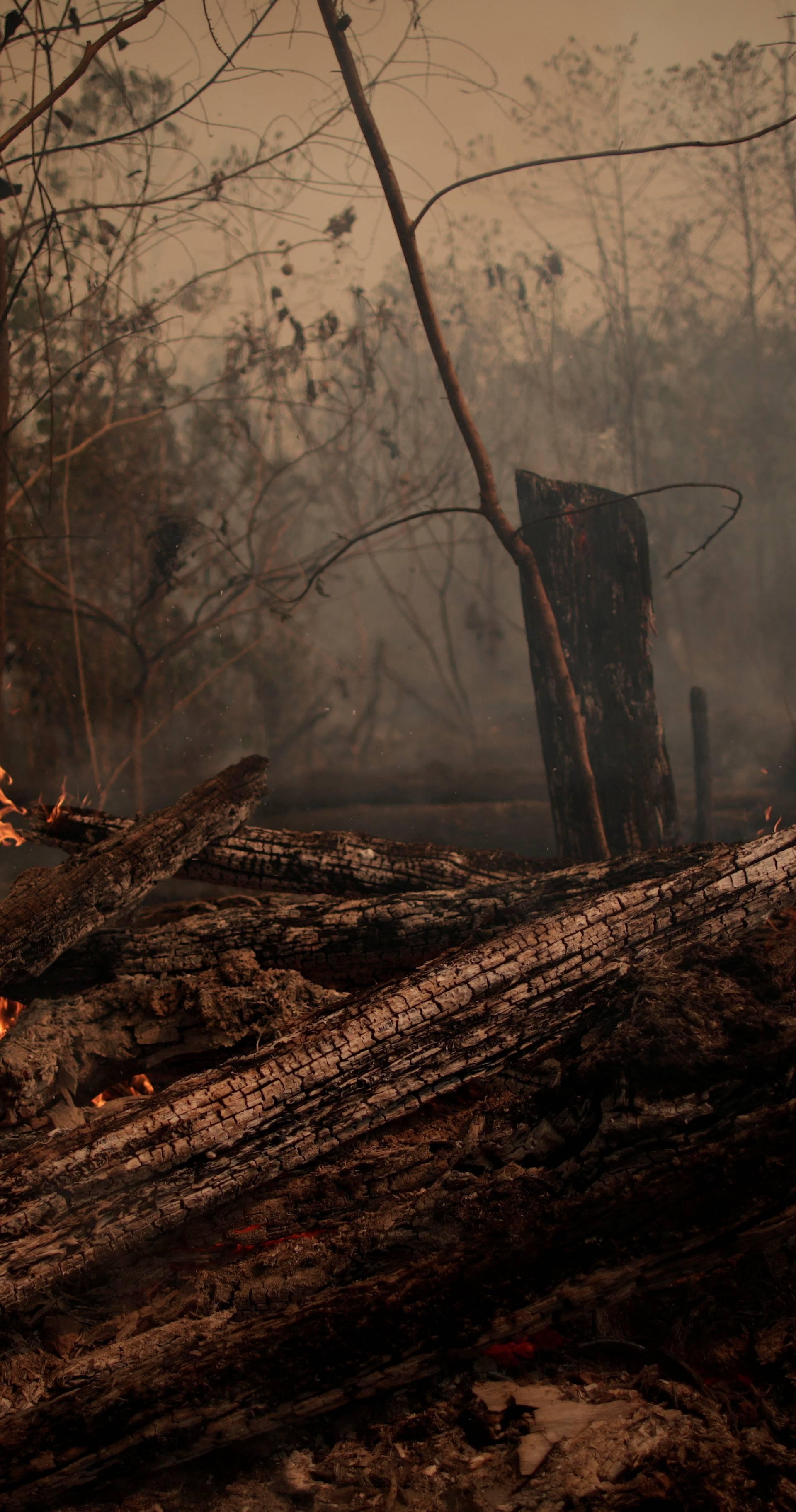 Zabrinuti Papa pozvao je na molitvu za spas Amazonije