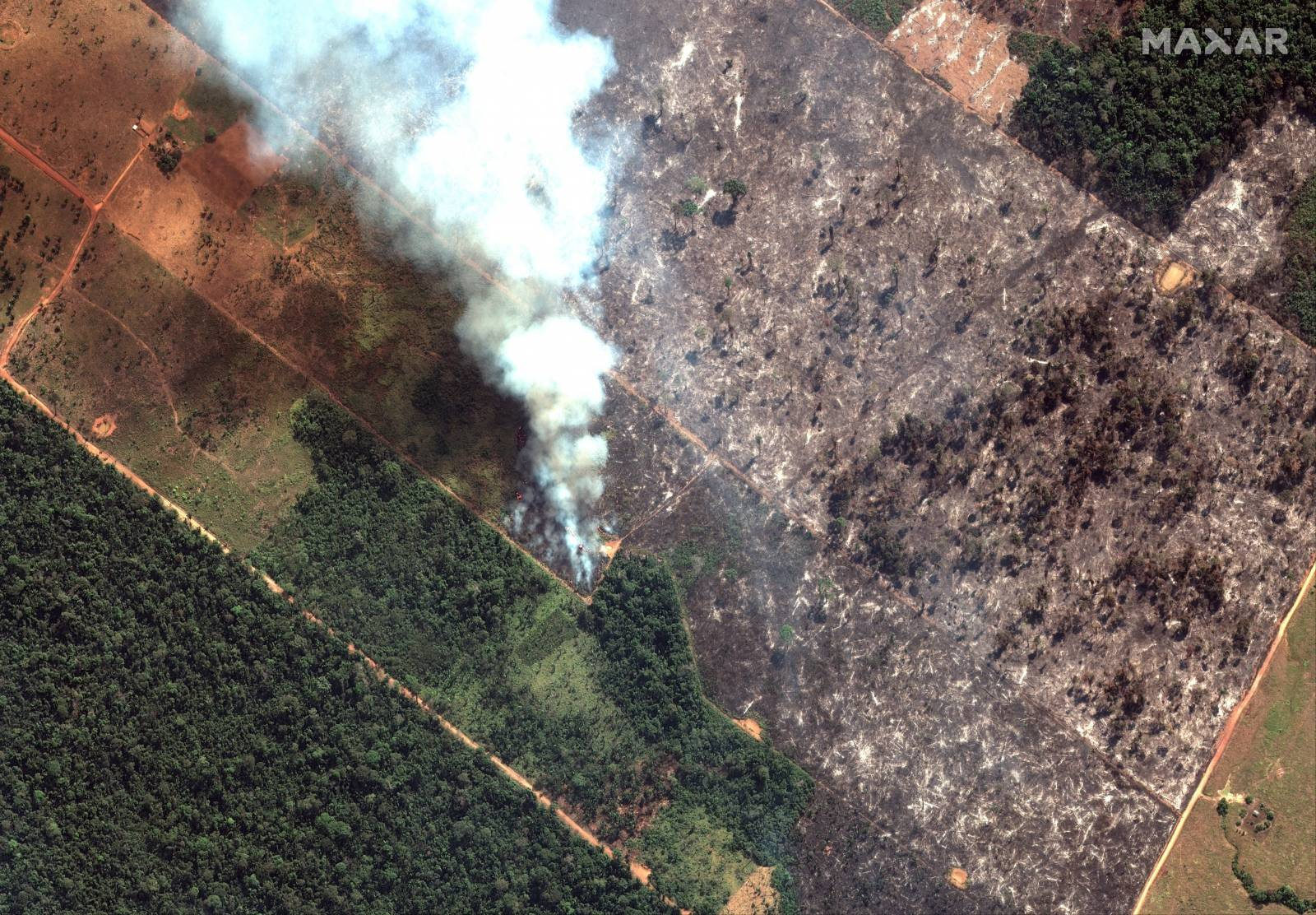 A satellite image shows smoke rising from Amazon rainforest fires in the State of Rondonia