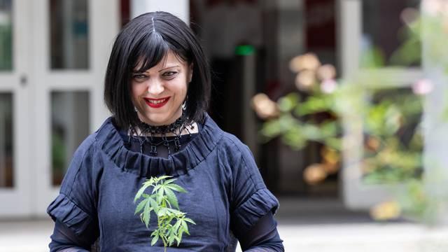 Zagreb: Nakon što je predstavila Lex cannabis, Mirela Holy posadila jednu biljčicu u žardinjeru