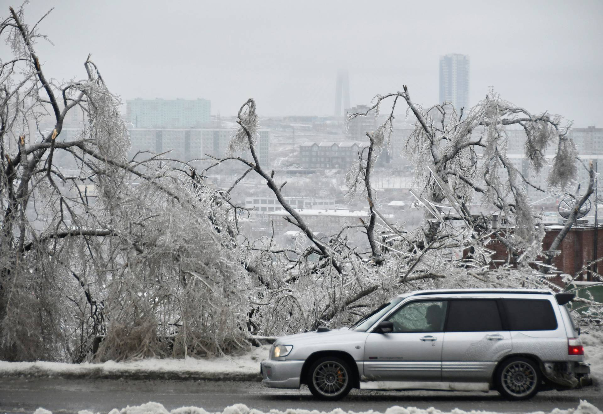 A car drives past trees covered with ice after freezing rain in Vladivostok