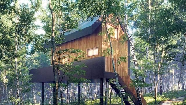 Mlada poduzetnica ima odličan projekt: 'Tree Elements' s 3 luksuzne eko kuće na stablu