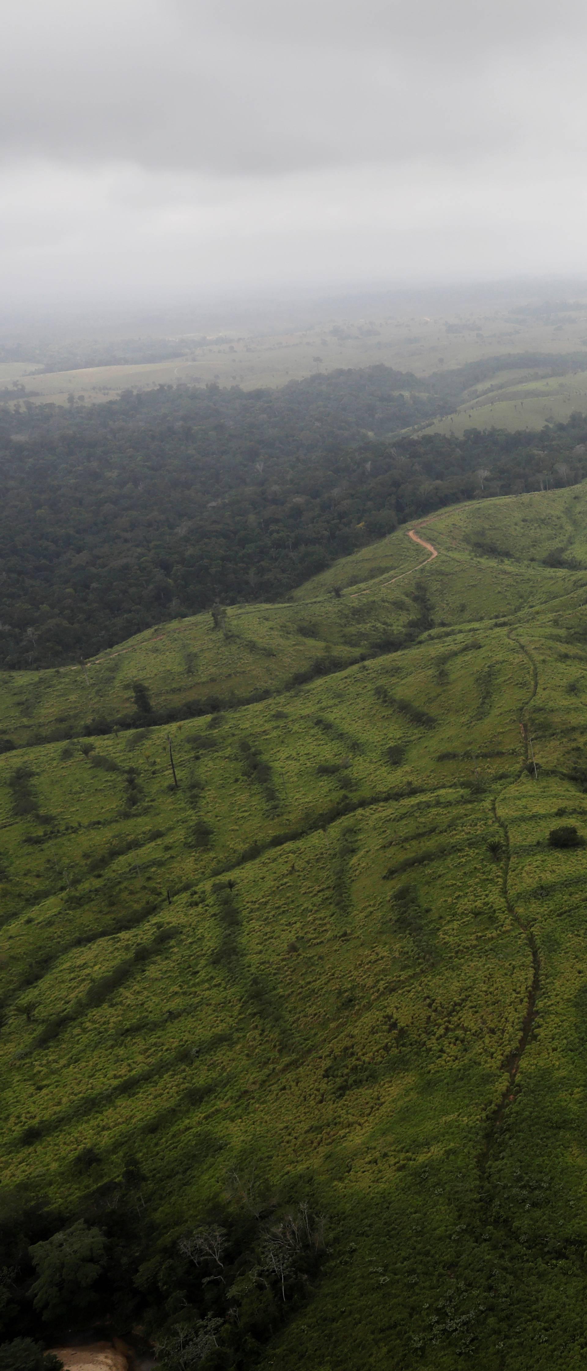 Upozorenje: Novi opasni virus mogao bi stići iz Amazonije