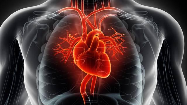 Zvuk aviona uznemiruje: Buka ozbiljno može naštetiti srcu
