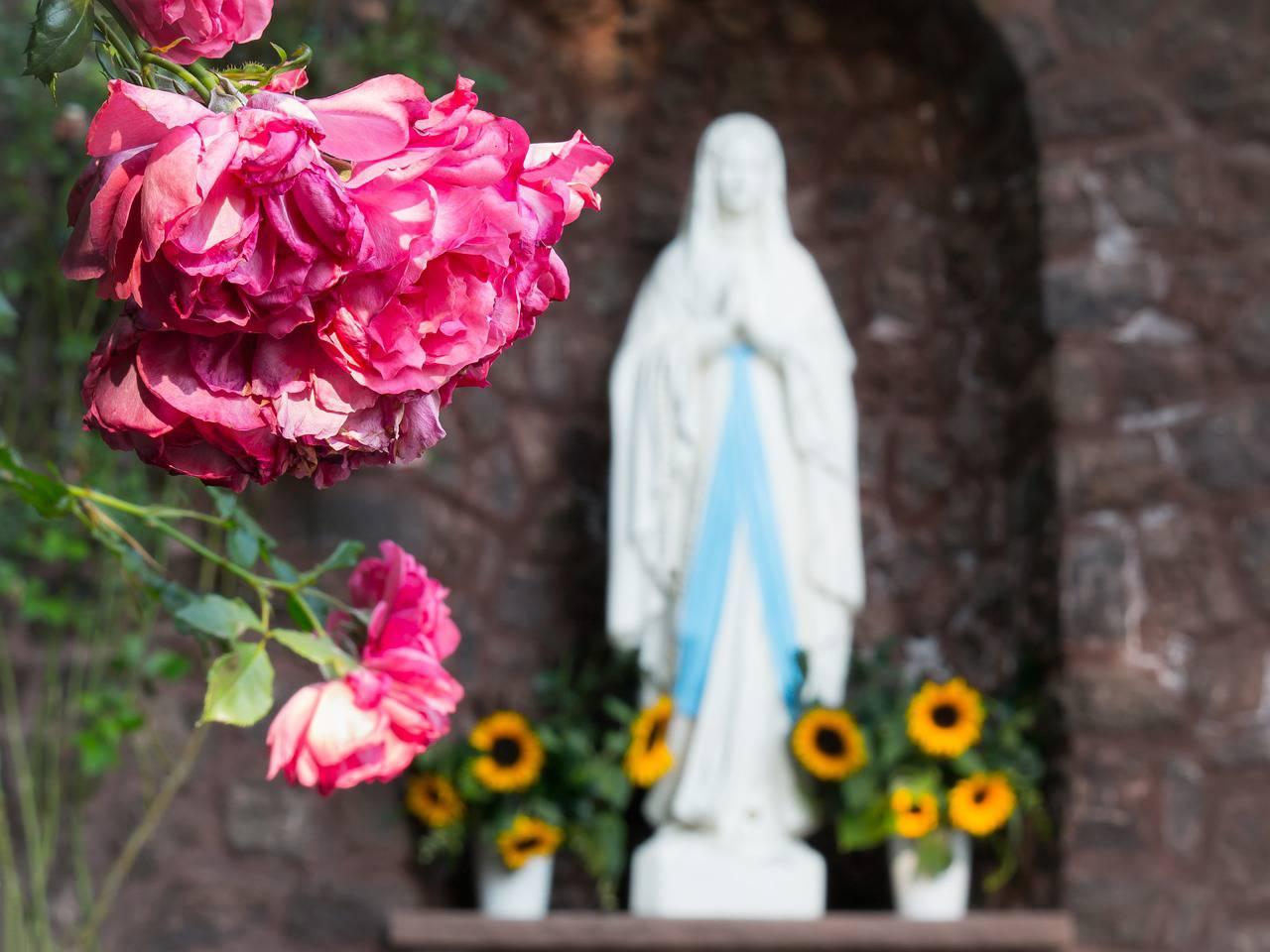 Simbolika cvijeća u kršćanstvu: Djetelina simbolizira Trojstvo, a maslačak Kristovu muku