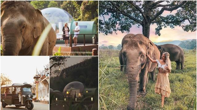 U ovom hotelu iz sobe gledate slonove, a navečer možete uživati u njihovom društvu