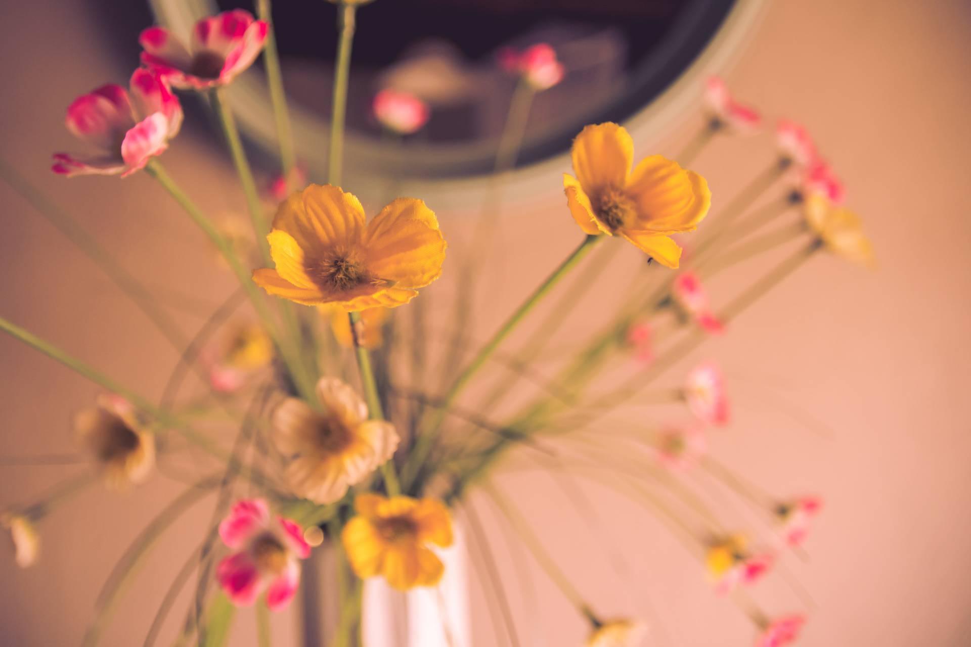 Trik kako da umjetne biljke ne budu prašnjave i svježe mirišu