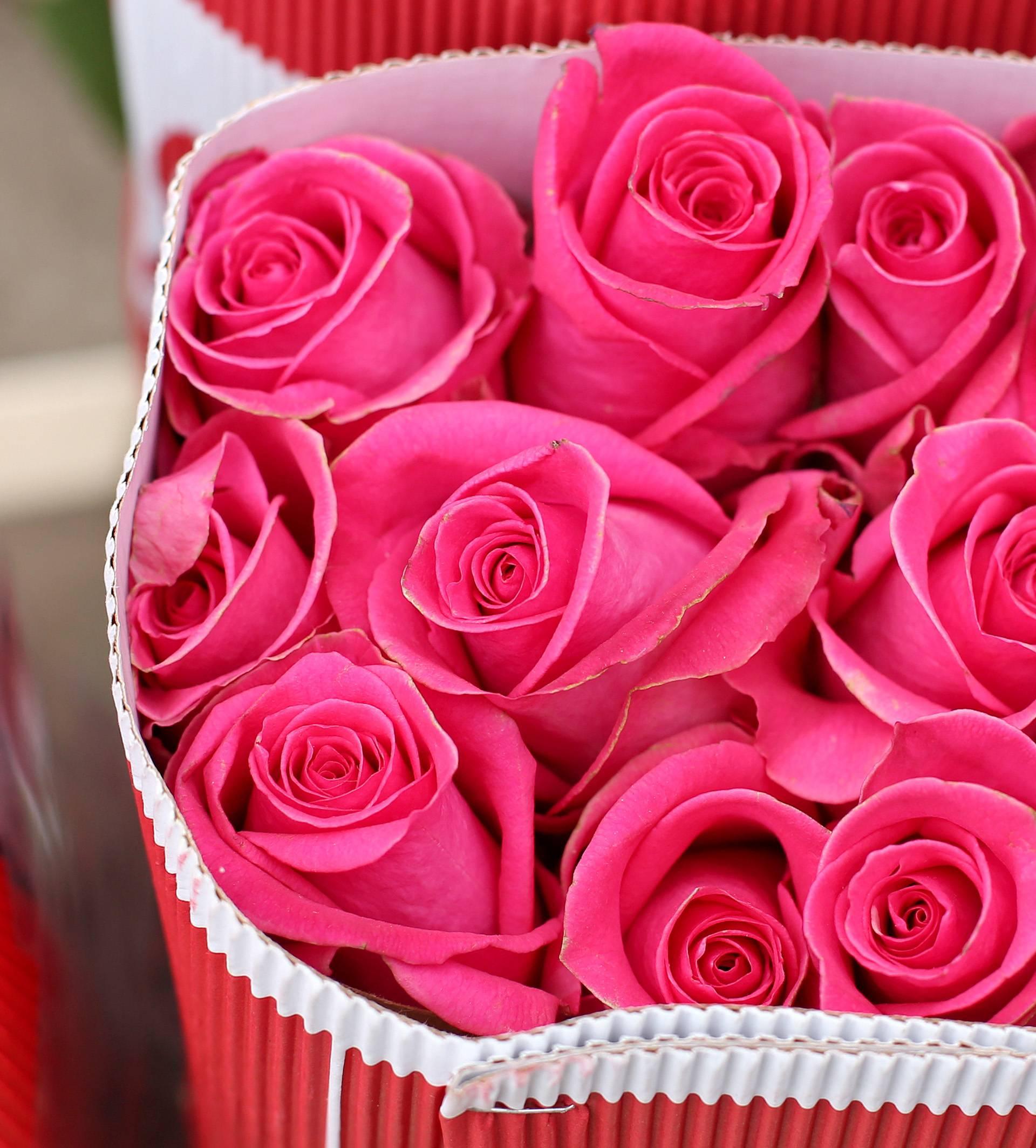 Pazite kakvu ružu darujete jer svaka boja ima svoje značenje