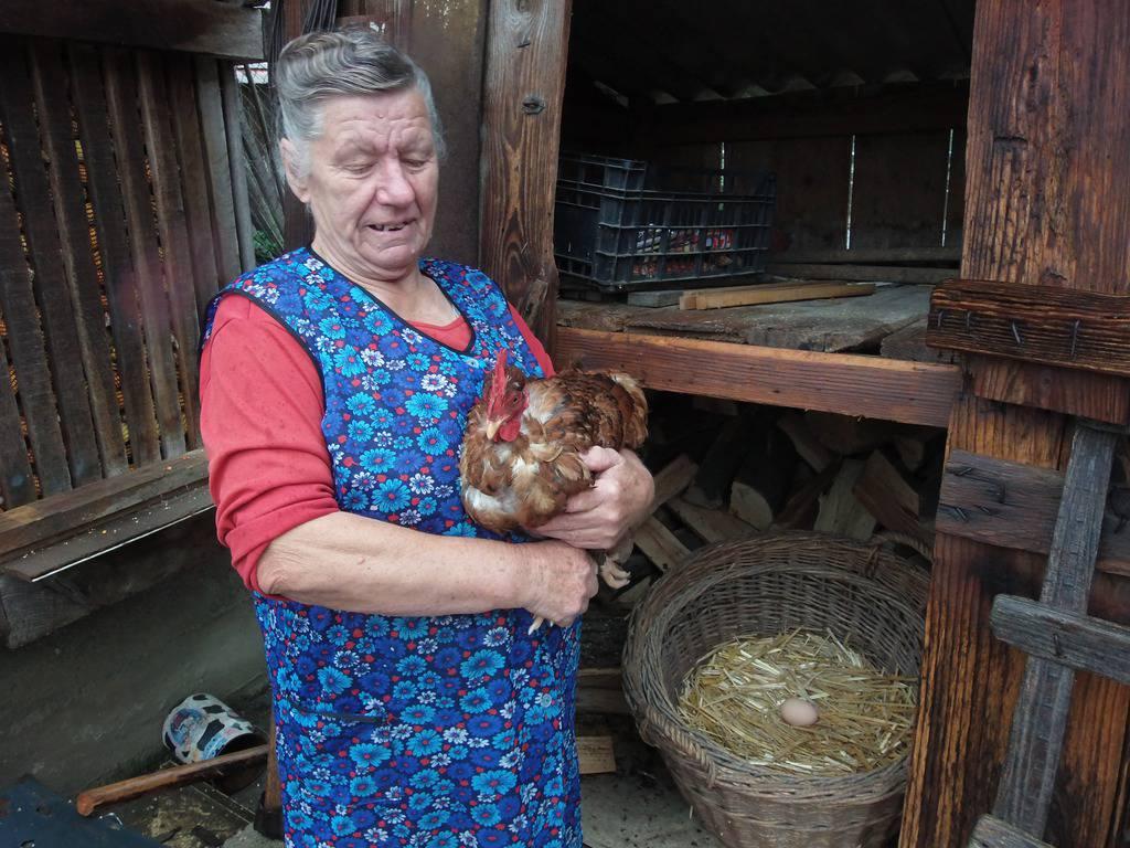 Zinka Čižmešija/24sata