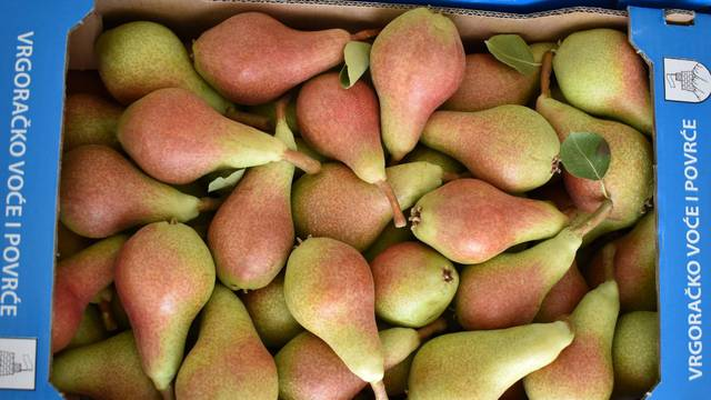 Otkud dolazi voće koje jedete?