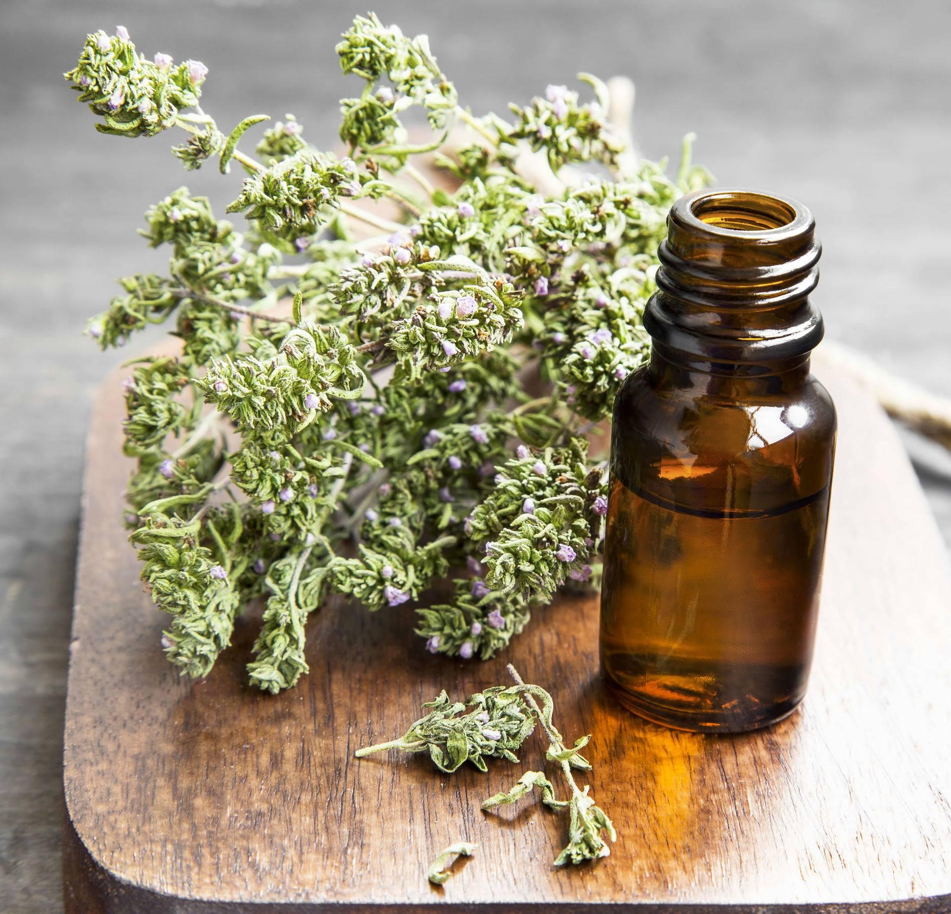 Za upalu grla, kašalj i bronhitis ova biljka je fantastičan lijek