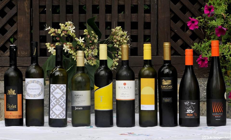 Mladi vinari napravili su 10 stilski ujednačenih vina...