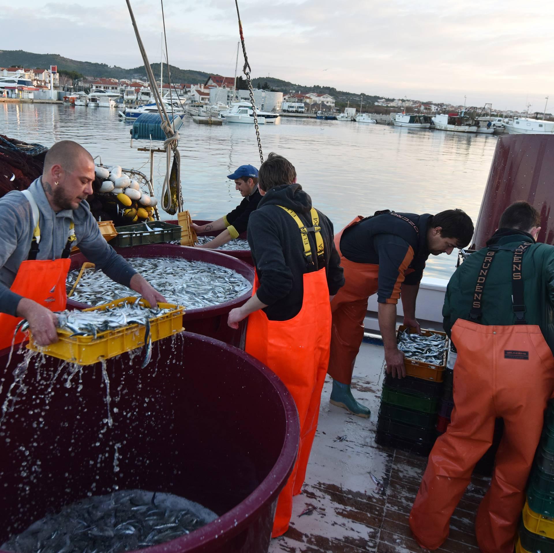 Plivaričarima  obeštećenja za privremenu obustavu ribolova
