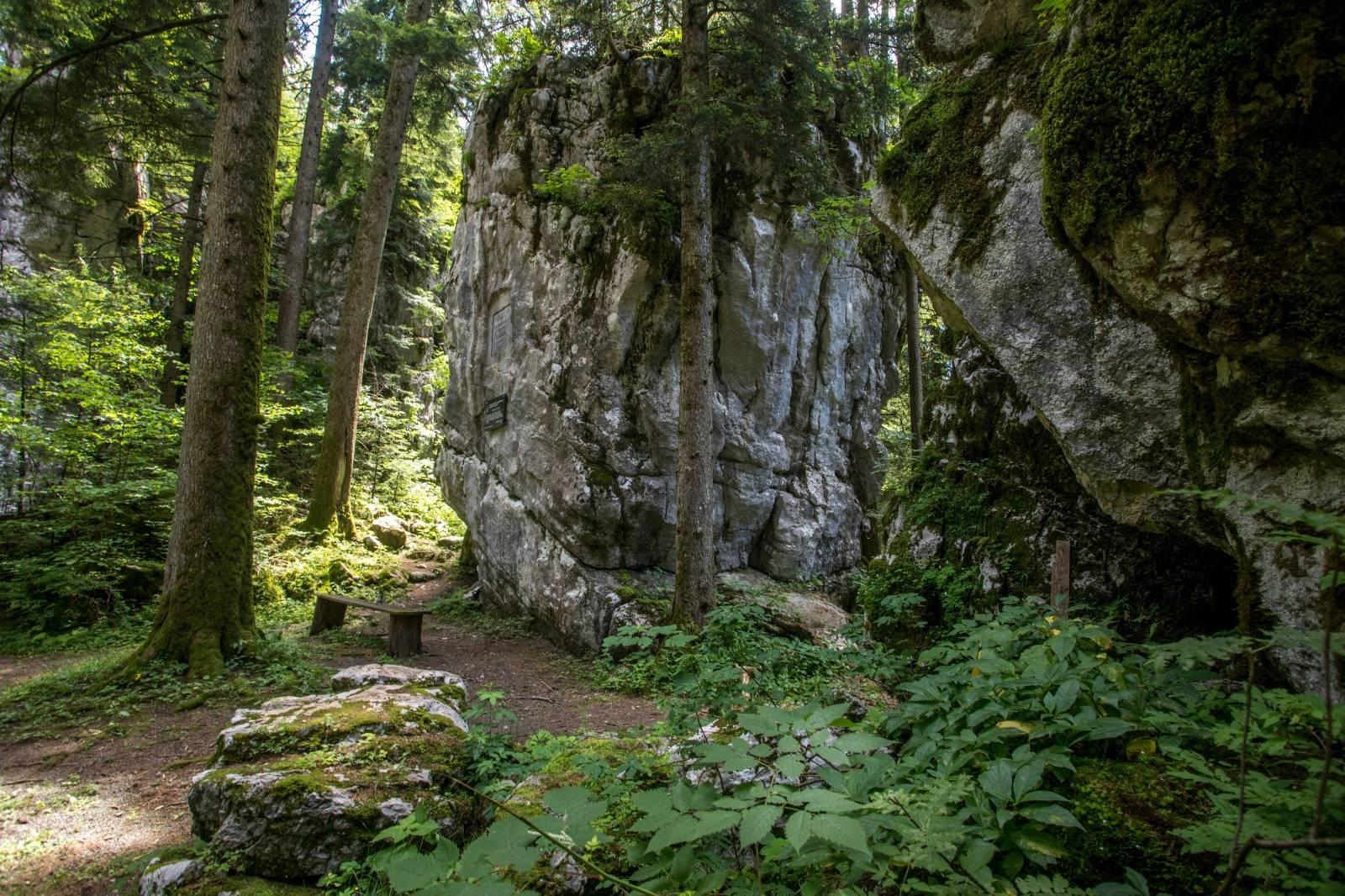 Osvježene u park šumi Golubinjak