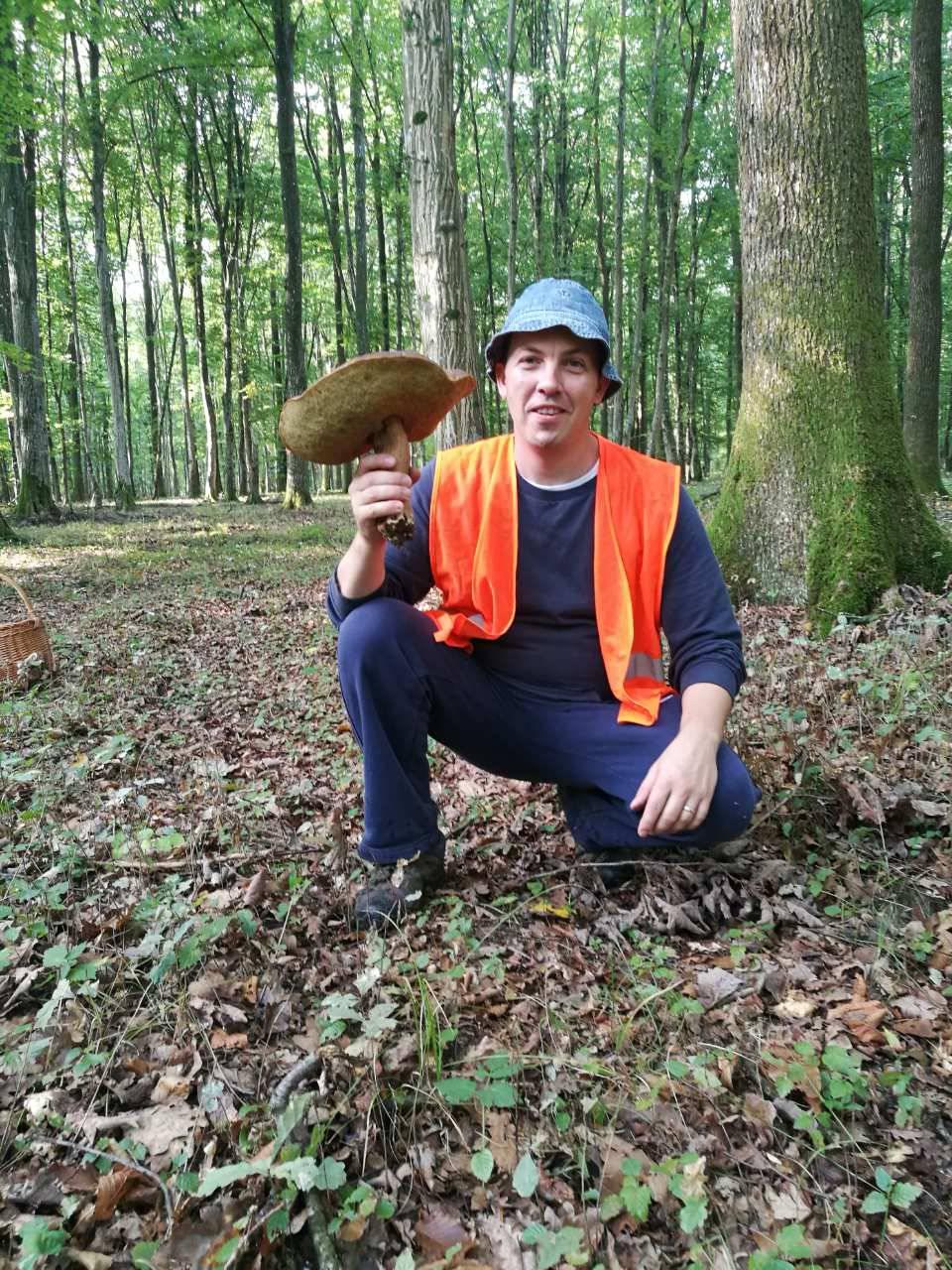 Šetao s obitelji šumom i naišao na ručak težak 1,1 kilogram...