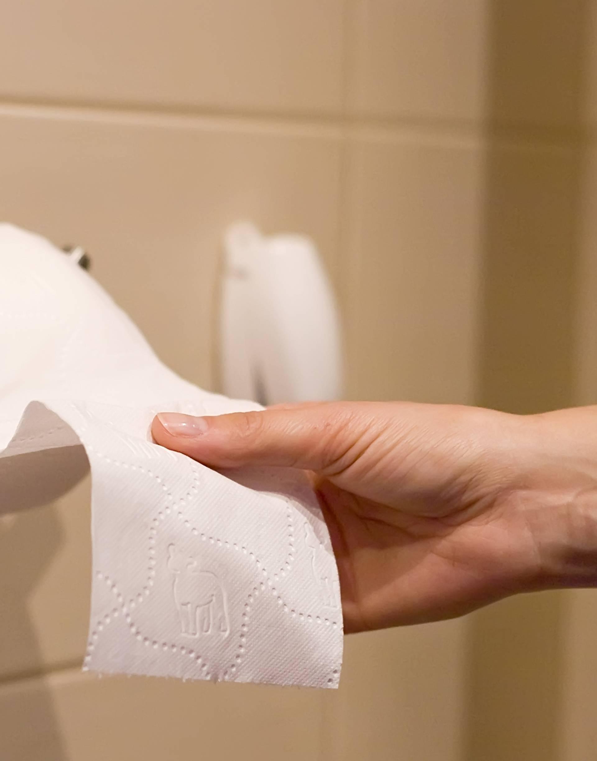 Od štapa do kukuruza: Što je sve nekad služilo kao WC papir