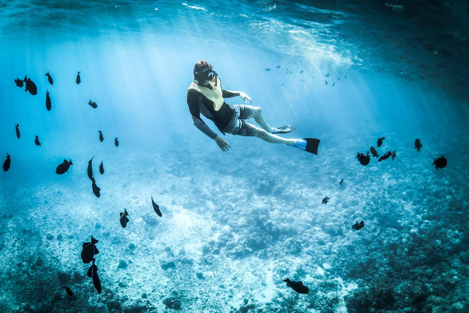 Sve što trebate znati o snorkelingu za početnike!