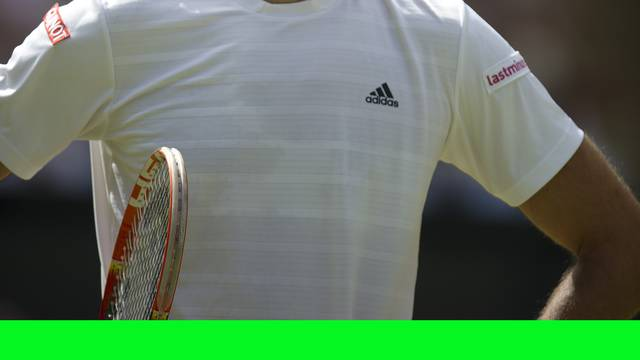Wimbledon Tennis Championships 2015