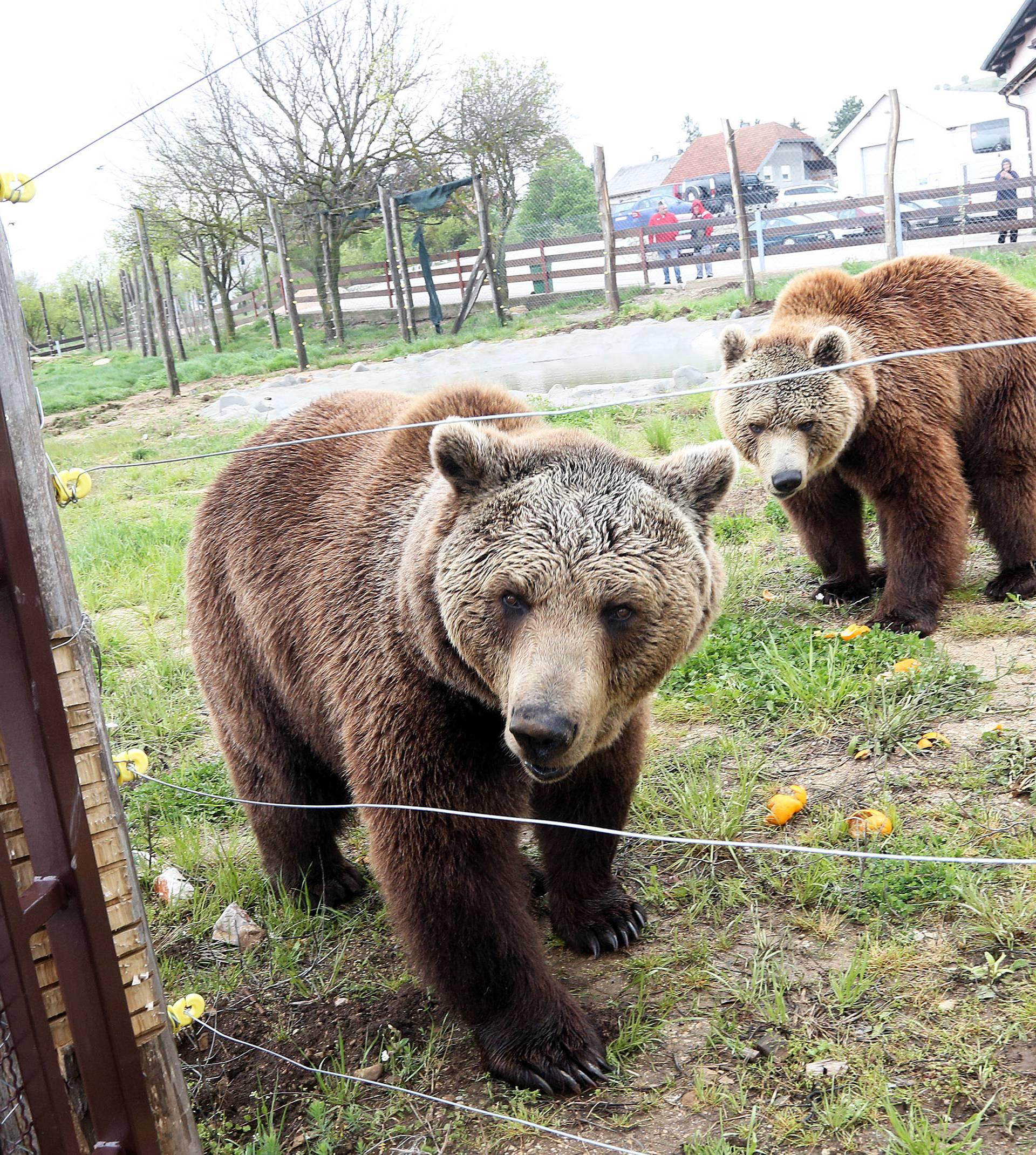 'I kako da se sada rastanem od medvjeda? Pa to su moje bebe'
