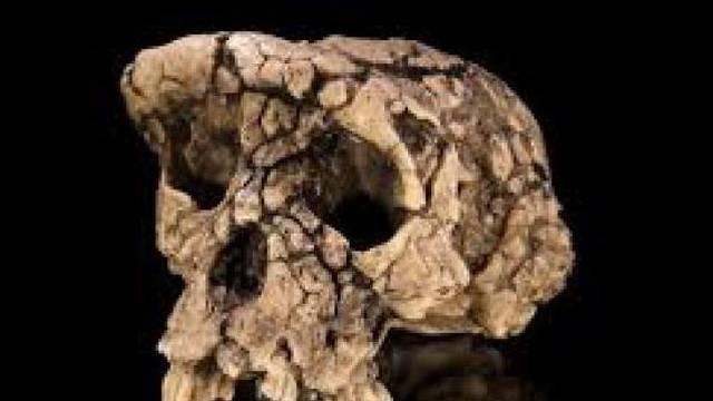 Znanstvenici u šoku: Afričkog pračovjeka pronašli u Izraelu...