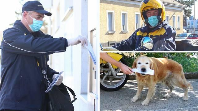 Poštari se ne boje: Psi nas više ne grizu, i oni su sad u izolaciji