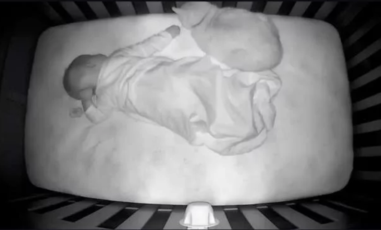 Mačak koji se pravio da ne voli bebu uhvaćen s njom u krevetu