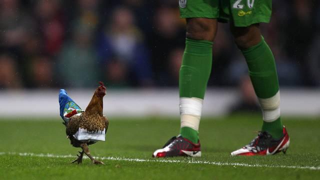Soccer - Barclays Premier League - Blackburn Rovers v Wigan Athletic - Ewood Park