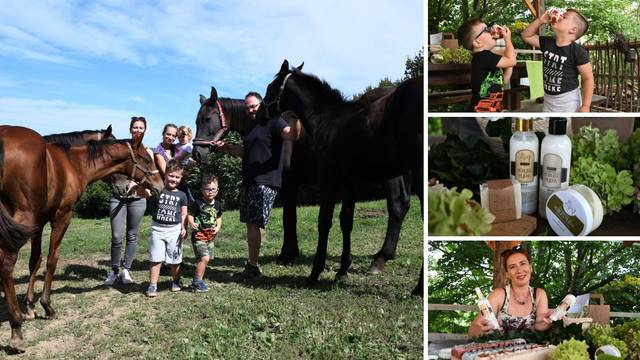 Ljekovita oaza kraj Bjelovara: 'Naše kobilje mlijeko pomlađuje i liječi bronhitis i psorijazu'