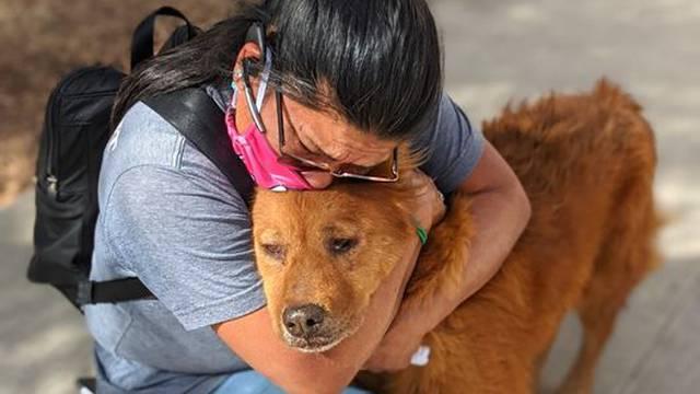 Opet su zajedno: Sedam godina tražila je svog izgubljenog psa