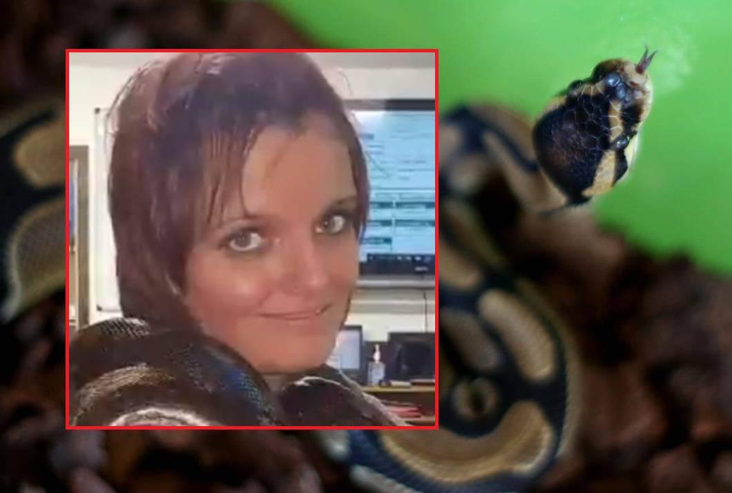 Udavio je piton od 2,5 metra: U kući šerifa bilo preko 140 zmija