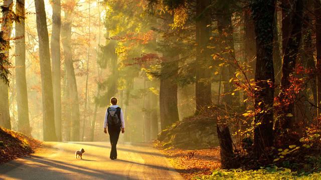 Drugačiji život u 2021.: Više ćemo se okrenuti prirodi i zdravijim alternativama