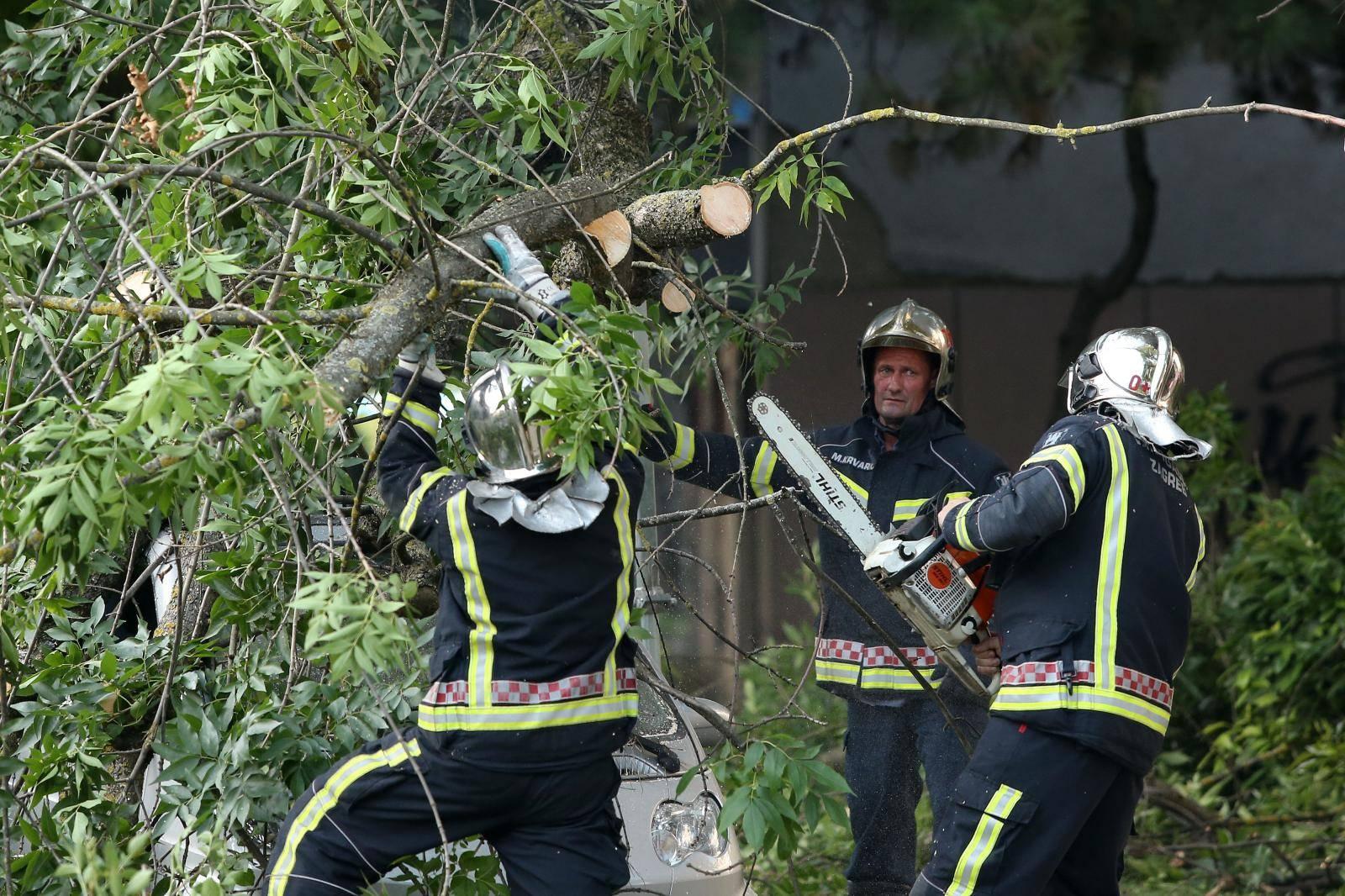 Zagreb: U Lastovskoj ulici pala grana na automobil i oštetila ga, intervenirali vatrogasci