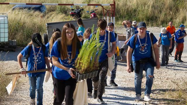 Tisuću volontera u Dalmaciji je zasadilo 10.000 novih stabala