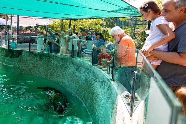 Pogledajte kako izgleda ljeto u zagrebačkom Zoološkom vrtu