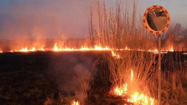Slavonski Brod: Palili su korov pa izazvali požar u šumi