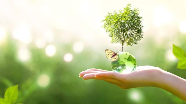 Earth,Crystal,Glass,Globe,Ball,And,Growing,Tree,In,Human