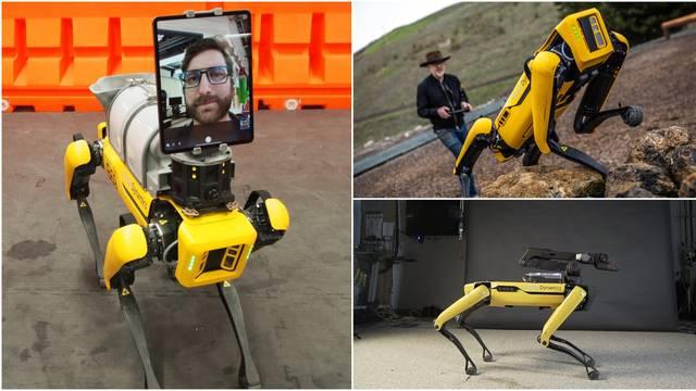 Robotski pas ide u prodaju: Ne smijete ga koristiti da bi naudili čovječanstvu, nije to Terminator
