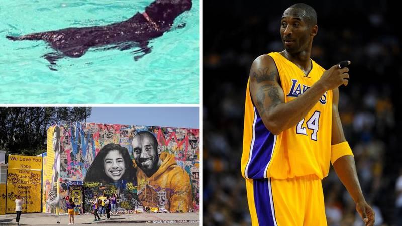 Kobe Bryant imao je psa koji je slušao naredbe na hrvatskom