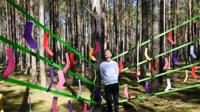 Šarene čarape osvanule u šumi kao dio eko-poslovnog projekta