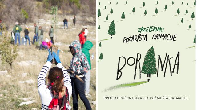 'Naši vrijedni volonteri posadili su čak 25.000 novih stabala'