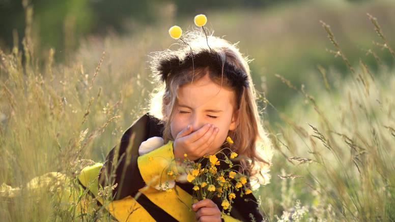 Kako razlikovati alergiju od prehlade i ukloniti simptome