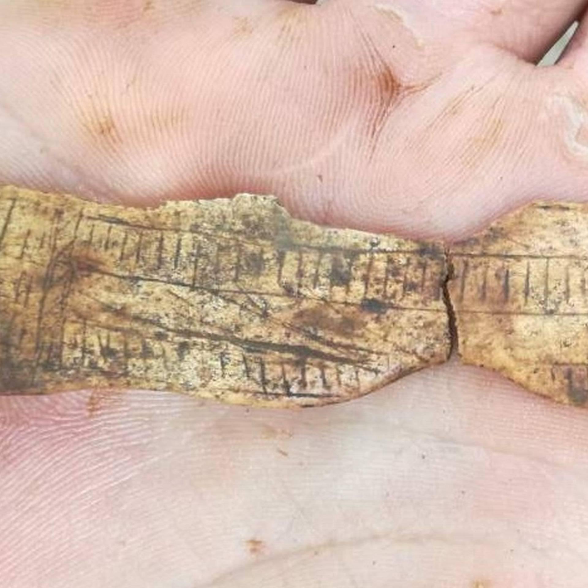 U sloju starom 15.000 godina otkrili su paleolitičku Veneru