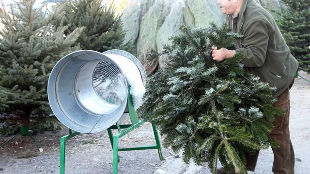 U Sl. Brodu drvca u posudi su duplo jeftinija nego u Zagrebu