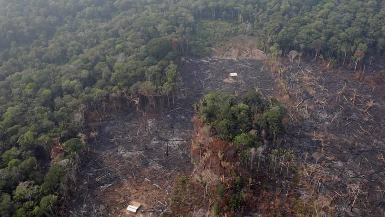 Stručnjaci: Amazona bi mogla postati izvor ugljičnog dioksida