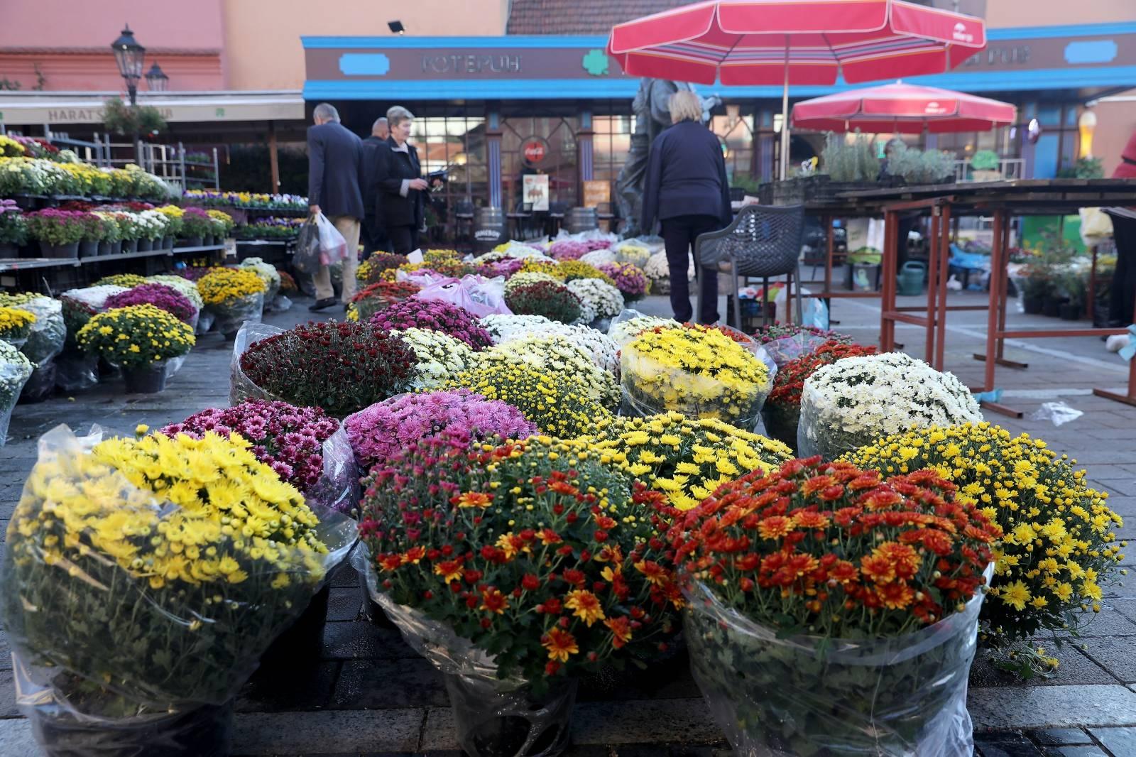 Zagreb: Bogata ponuda raznog cvijeća na Opatovini uoči blagdana Svih svetih