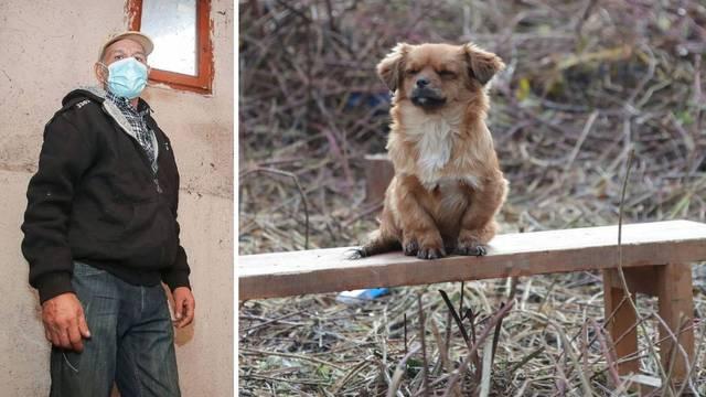 Pas kojem je poginuo vlasnik je nestao, obitelj je očajna: Vratite nam Medenu, tužni smo bez nje