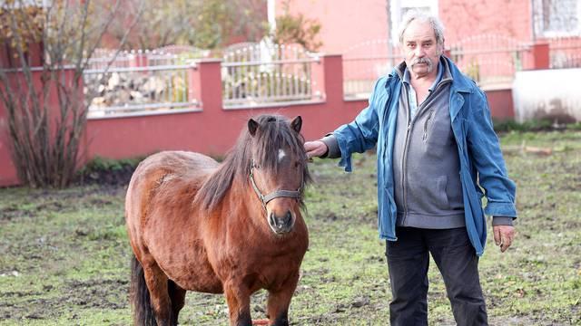 Smoki traži dom: Josip (62) za ponija se više ne može brinuti